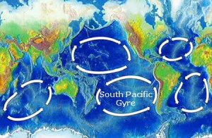 The five main oceanic gyres