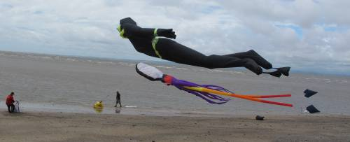 Diver and squid kites at Catch the wind 2017